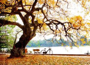 Hồ Gươm (Hồ Hoàn Kiếm) - Hà Nội
